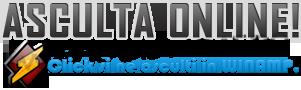 Radio Petrecere,Populara